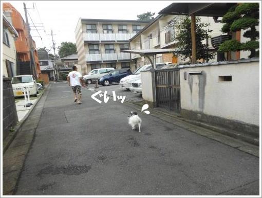 099_convert_20120723120958.jpg