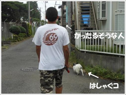 107_convert_20120723121606.jpg