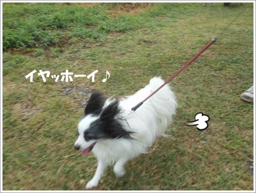108_convert_20120808104842.jpg