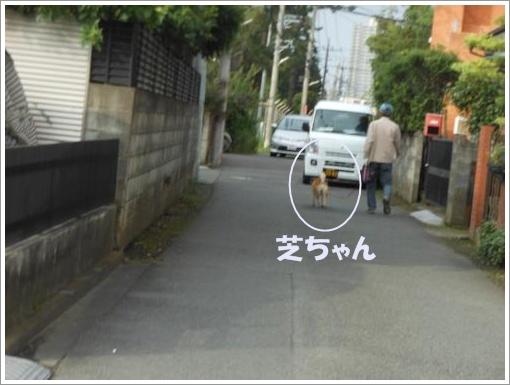 111_convert_20120712120707.jpg