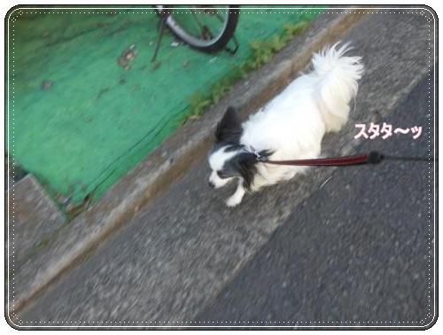 DSCN0625_convert_20120516121142.jpg