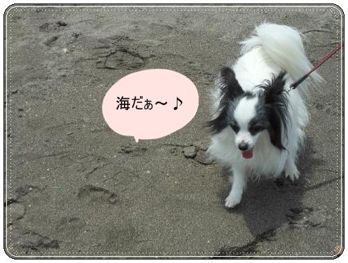DSCN0723_convert_20120521121413.jpg