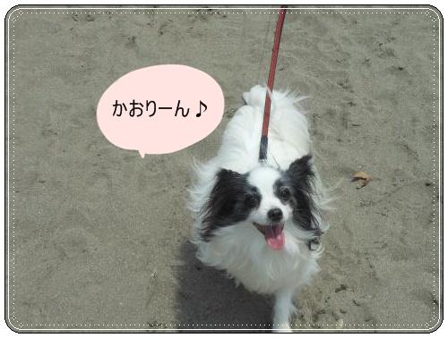 DSCN0727_convert_20120521122103.jpg