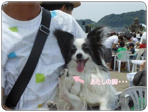 DSCN0729_convert_20120521123328.jpg