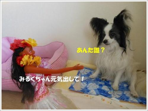 DSCN1343_convert_20120626104550.jpg