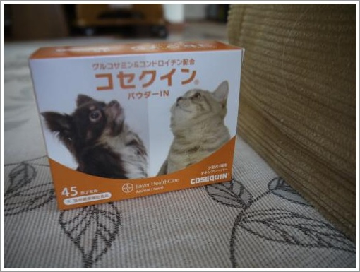 P1000442_convert_20120919083757.jpg