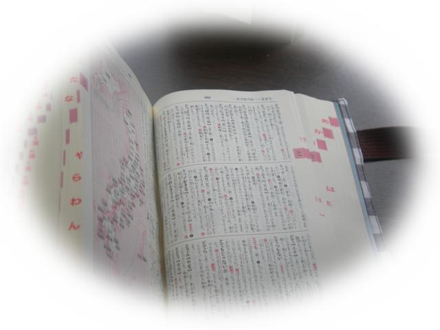 kako-LFbvp50vRZtMpdTp.jpg