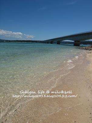 2012_0625_144839-P6255627沖縄