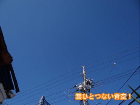 01_20120427165710.jpg