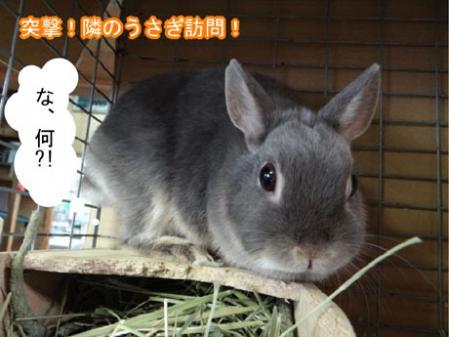 01_20120511164117.jpg