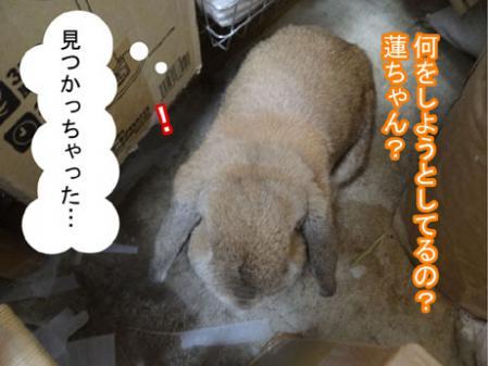 01_20120525164327.jpg