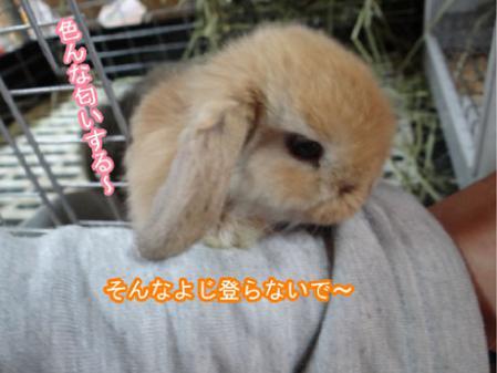 09_20120525170346.jpg