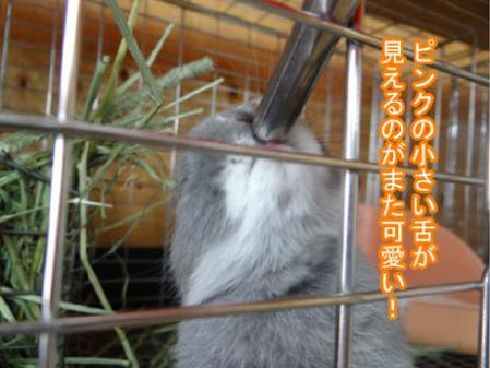 09_20120601180813.jpg