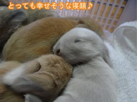10_20120622174130.jpg