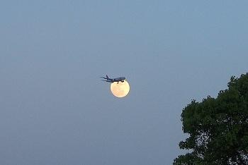 ひこうきと月