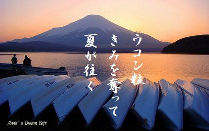 ゆうひ(山中湖)文字入