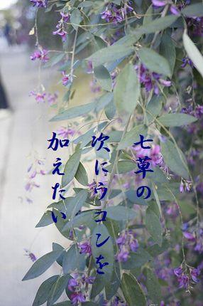 はぎの花3文字入