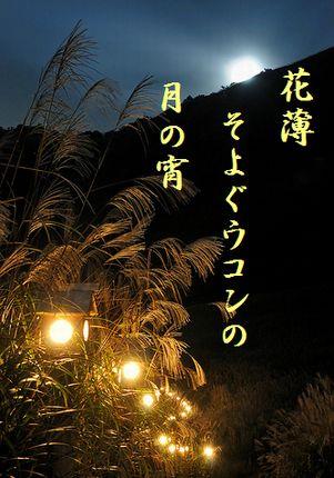 すすき(ライトアップ)文字入