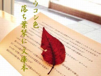 しおり(紅葉)文字