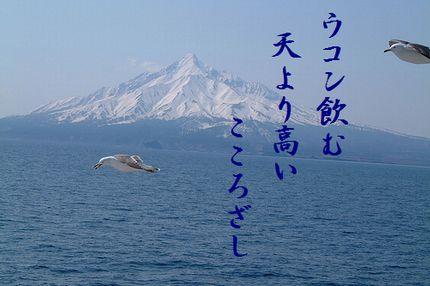 カモメ(北海道2)文字