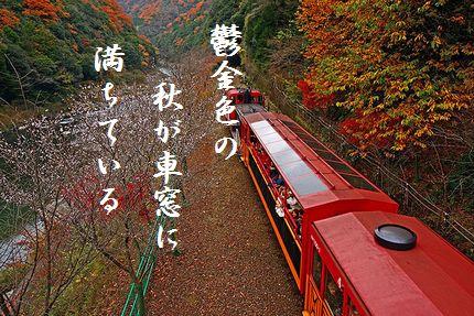 トロッコ列車(嵯峨野)文字新