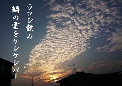 うろこ雲6文字