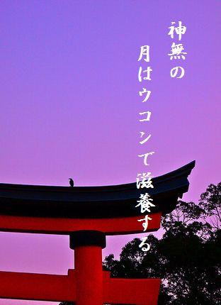 たそがれ鳥(宇佐神宮鳥居)文字