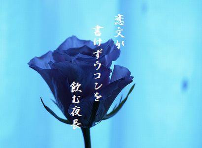 あおい薔薇10月秀作新