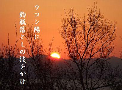 ゆうひ(冬) 10月秀作