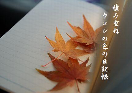 しおり(紅葉)3文字入
