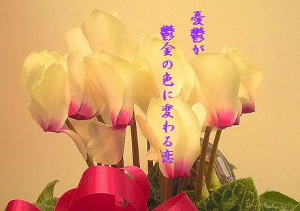 シクラメン(黄色)文字