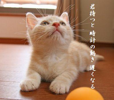 ネコ(ちびネコ)時計の動き遅い