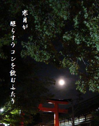 つき(下賀茂神社月見)寒月が照らす