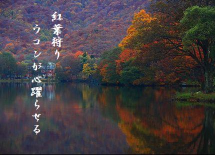 こうよう(五色沼)文字