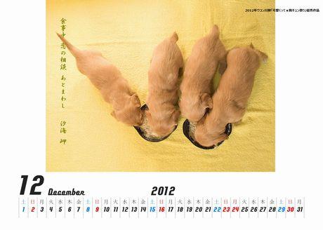 いぬの赤ちゃんカレンダー新新恋の相談460