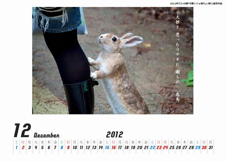 ウサギカレンダー大根460