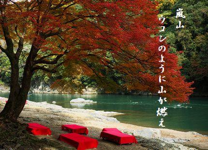 ほづ川(京都)文字入2