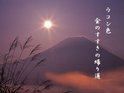 ふじさんとススキ(夕景)文字