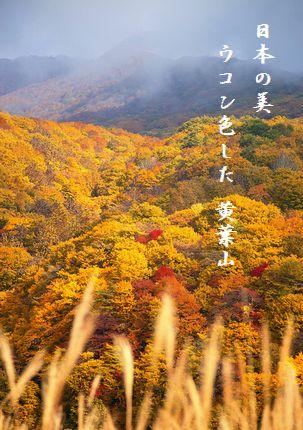 こうよう(磐梯山)文字