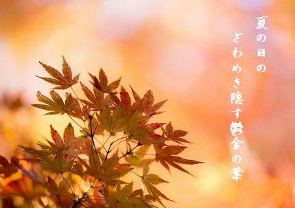 こうよう(上野公園)文字