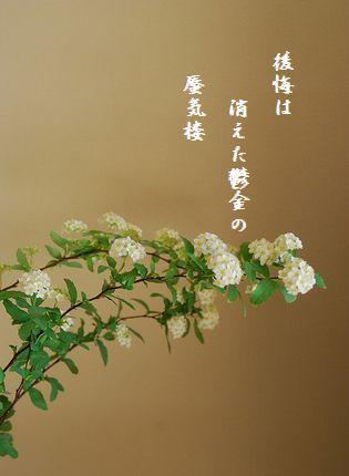 ふゆの花(小手毬)文字