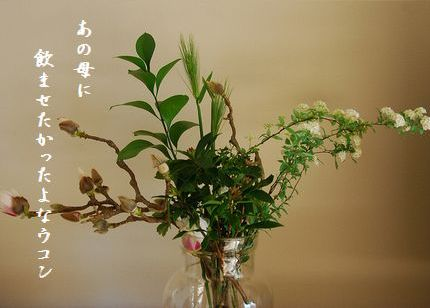 ふゆの花(白木蓮、沈丁花、小手毬)文字