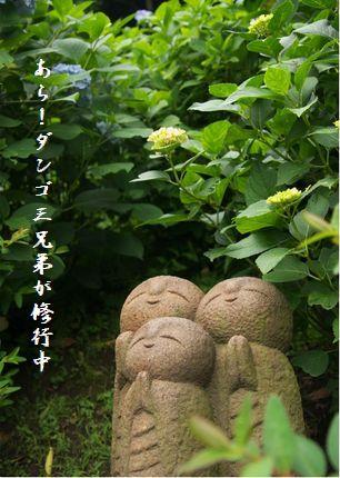 U1-Eダンゴ三兄弟
