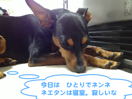 20130314-5.png