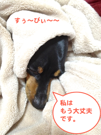 20130314-7.png