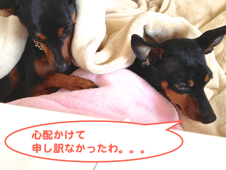 20130316-1.png