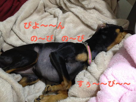 20130316-4.png