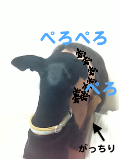 20130319-1.png