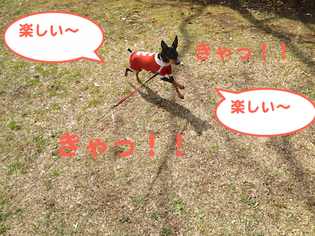 20130321-2.png