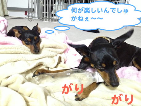 20130321-6.png